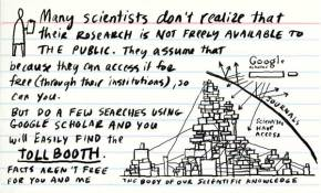 """The """"Nature"""" of scientific publishing. Are high impact journals distorting the scientificprocess?"""