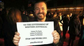 Shark cull in Western Australia: When policy laughs in the face oflogic