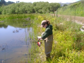 AmeriCorps for Environmental Scientists