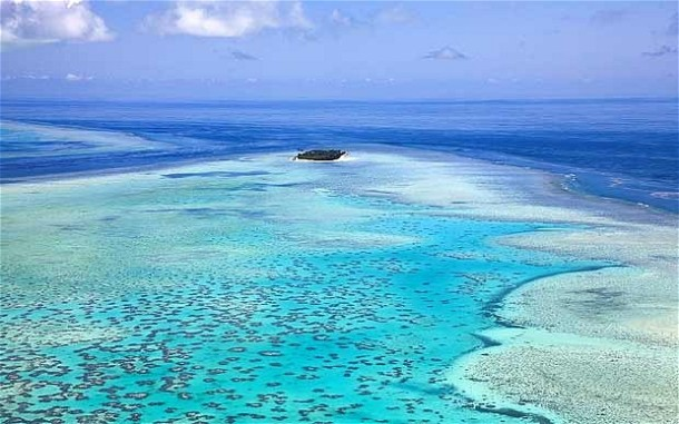 An aerial view of the Great Barrier Reef.  Image from the Telegraph UK.