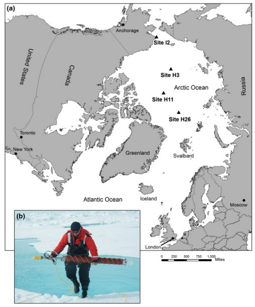 A map of the study site in the Arctic.  Sites labeled with triangles indicate locations from which ice cores were collected.  The photograph inset shows the equipment used to collect the cores.  Image from Obbard et al. 2014.