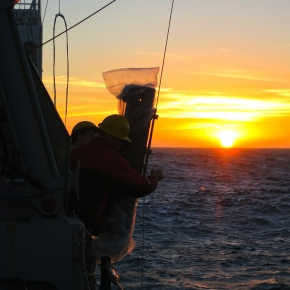 A Scientist at Sea: California Current Research Cruise (Part II)