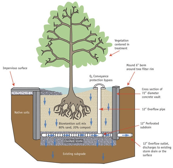 A cross-section of a tree box, the star of today's Photography Friday!  Read on to learn what this Best Management Practice means to your favorite ocean.  Image from http://ciceet.unh.edu/unh_stormwater_report_2007/treatments/tree_box/design.php.