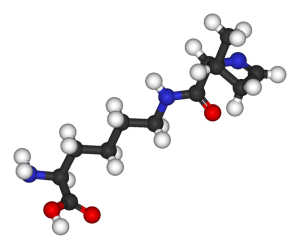 The amino acid pyrrolysine.