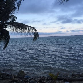 Coral research in Belize, a cultural melting pot. Field Season 2014