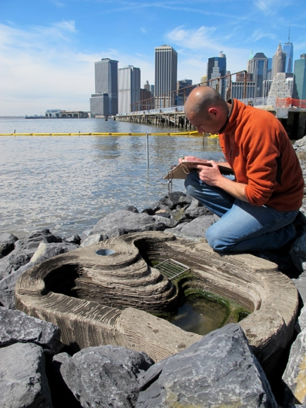 Dr. Ido Sella near a tidepool made of ECOncrete in a restored Brooklyn shoreline. The team designed the tidepool to include layers and crevices like a natural tidepool. Image from http://www.econcretetech.com/products/tide-pools.