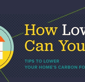 Do you want to lower your carbon footprint? This great infographic will help you do just that!