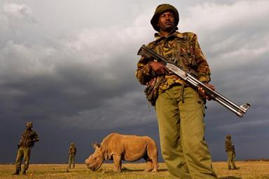 Armed guard, Ol Pejeta Conservancy