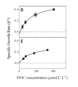 Look!  They are actually eating the DOC, but only at higher concentrations (Arrieta et al., 2015).