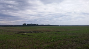 The former solely agricultural area of North Eastern North Carolina that will host the wind turbine farm to the tune of $50,000 for the first year. (x)