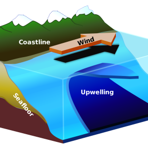 Visualizing Upwelling