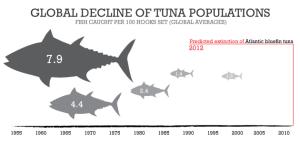 Tuna-Decline