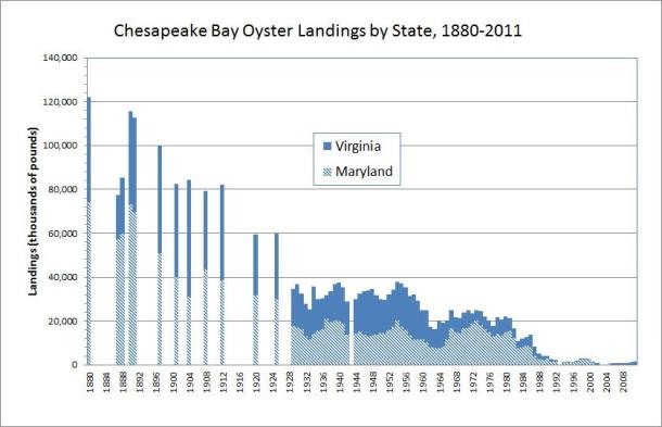 oyster graph.jpg