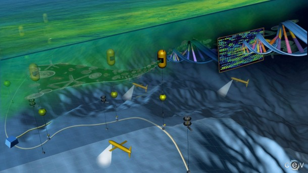 Ecogenomic Sensor (Credit: Armbrust Lab, UW)