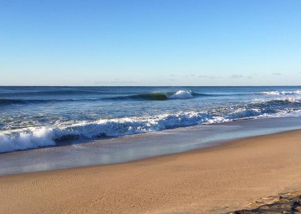 healthy ocean.png