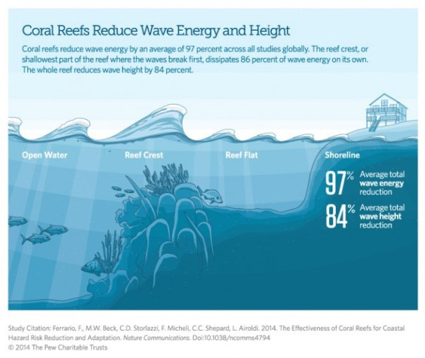 wave-reef-thinkprogress