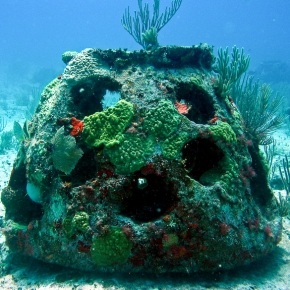 Understanding reefs part 2: Artificial reefs and reef restoration